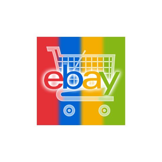 eBay Programs